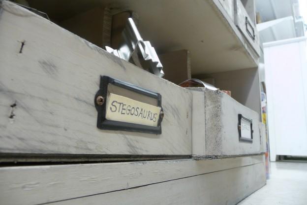 """Eine Schublade mit der Aufschrift """"Stegosaurus"""""""